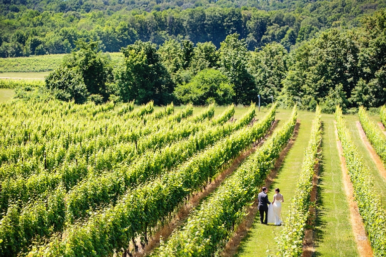 bride and groom walking through the vineyard on the shore of lake michigan